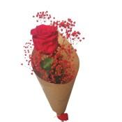 Rosa Preservada - Eterna