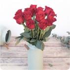 Paquete de Rosas Premium
