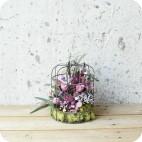 Jaula con Flor Preservada
