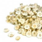 Paquete de Helichrysum Preservada