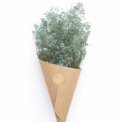 Paquete de Paniculata Preservada