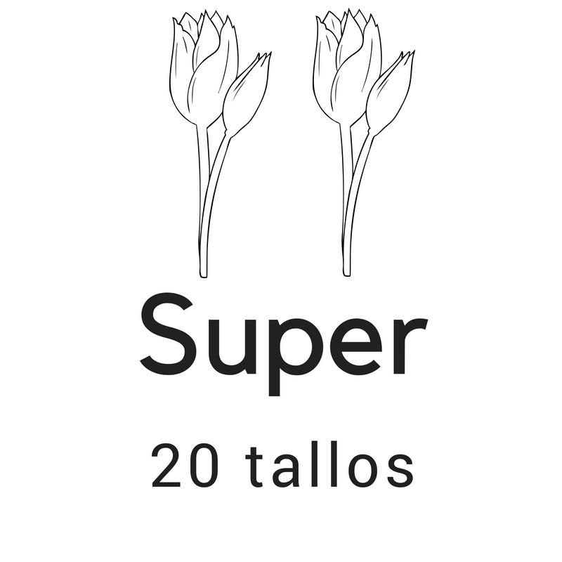 Super 20 tallos