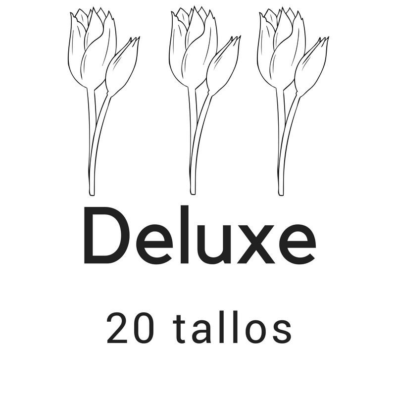 Deluxe 20 tallos
