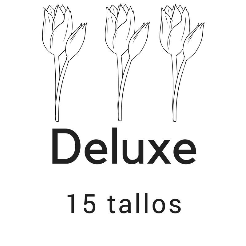 Deluxe 15 tallos