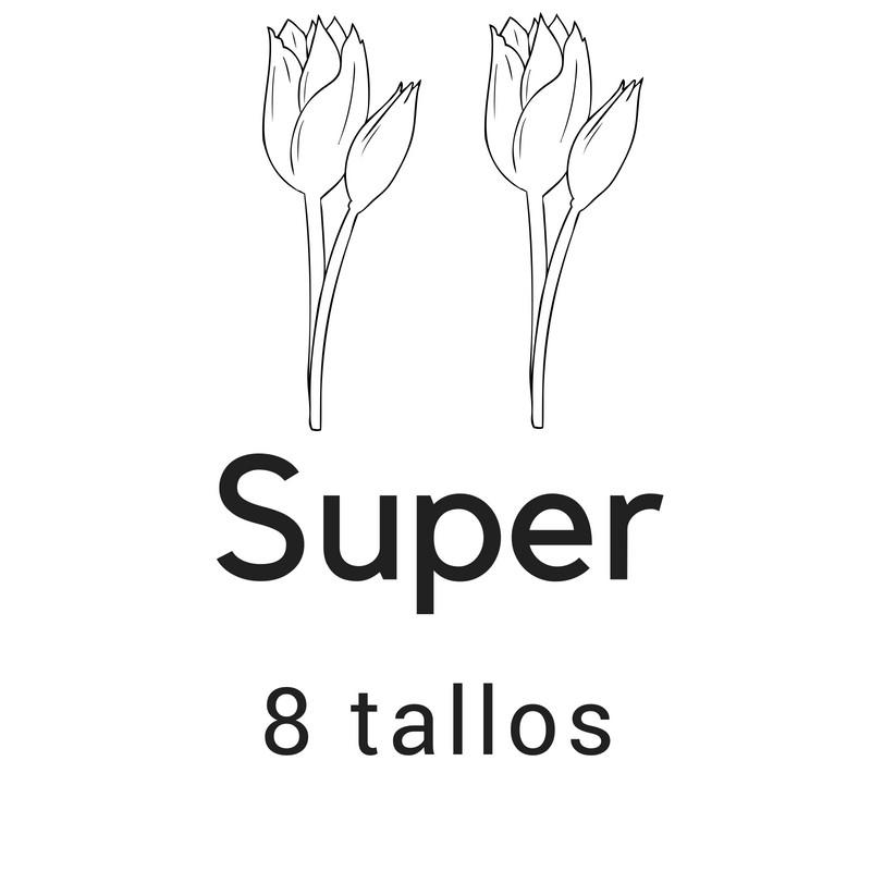 Super 8 tallos